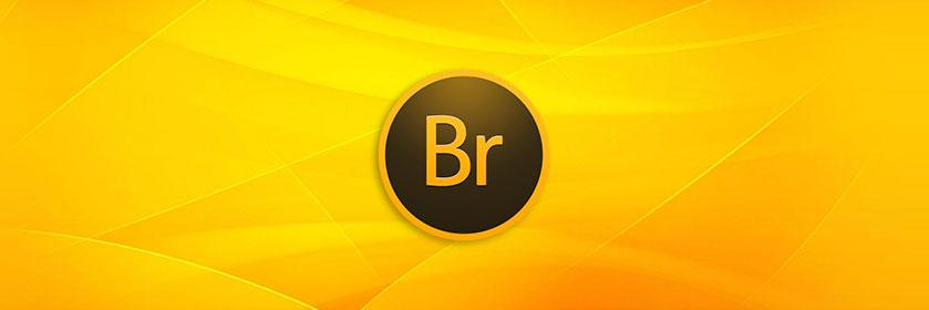 Output in Adobe Bridge CC 2015 6.3