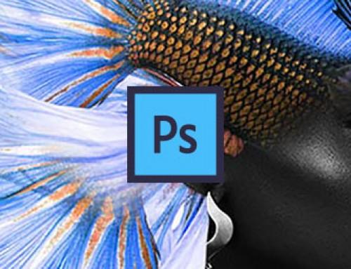 Composizione in Photoshop ispirata da Temi Coker